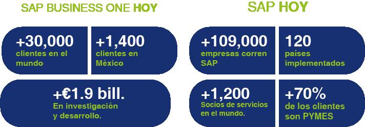 SAP_B1_HOY