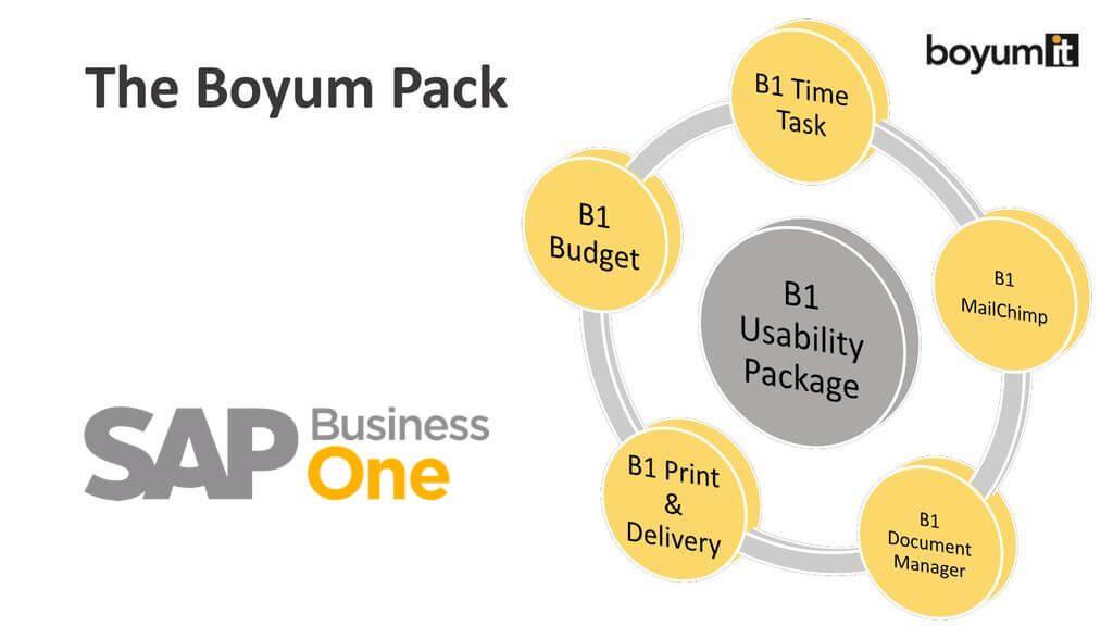 Boyum es el Add-On de SAP B1 que tu empresa necesita
