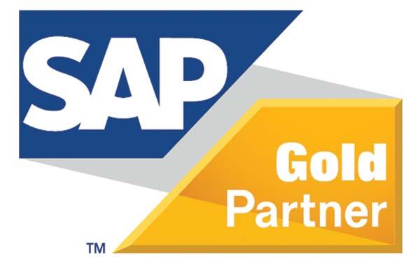 Cómo reconocer a un buen Gold Partner SAP B1