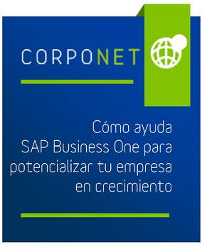 preview_infografia_como_ayuda_sap_business_one_para_potencializar_tu_empresa_en_crecimiento-01-1